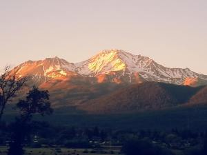 Mount Shasta at sunset.
